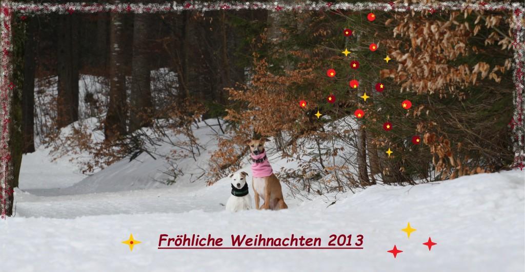Weihnachtsgrüße2013